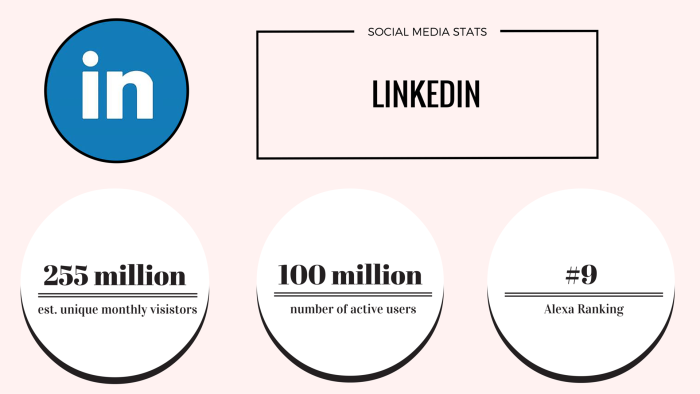 linkedin social media stats